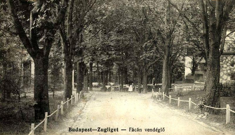 A versenyzők elhaladtak a Fácán vendéglő előtt is. Forrás: Forrás: http://postcards.hungaricana.hu/hu/23481/